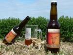 Biere-Volcelest-sur-epis-de-ble-800x600_visuel_resume