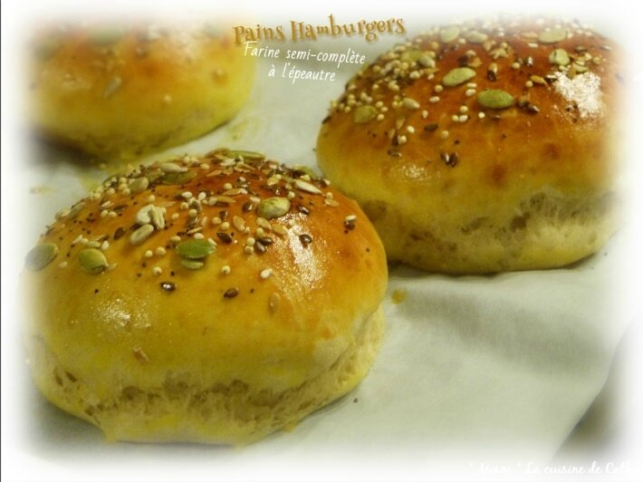 Pain hamburger3