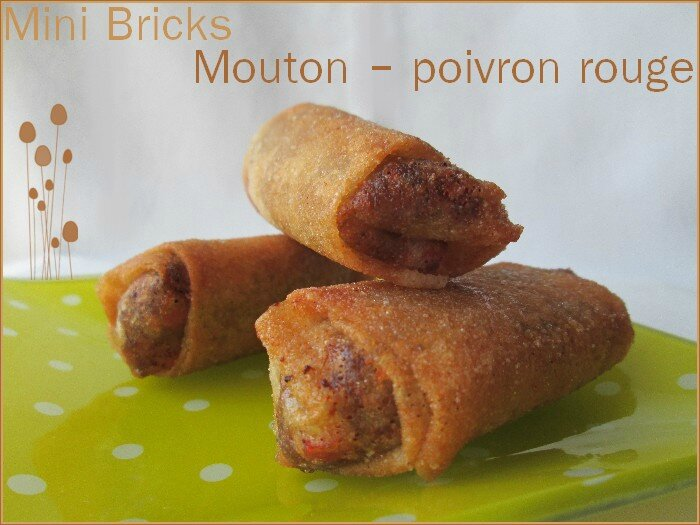 mini bricks mouton - poivron rouge 1