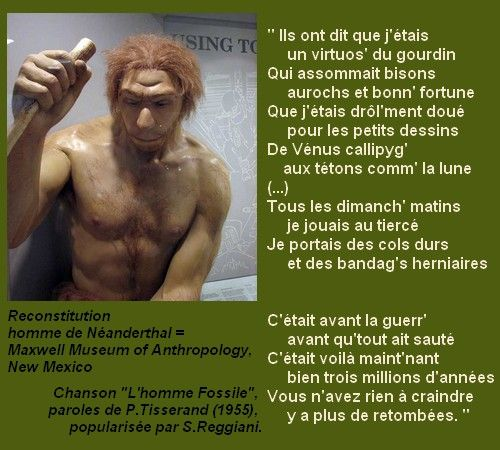 Homme-Fossile