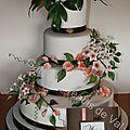 Le mariage de mes amis Marie-Pierre et Raphael