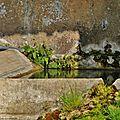 3-Petit lavoir - commune de Saint-Vincent de Cosse