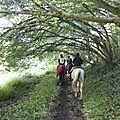 balade à cheval médiévale - Abbaye de Hambye (298)