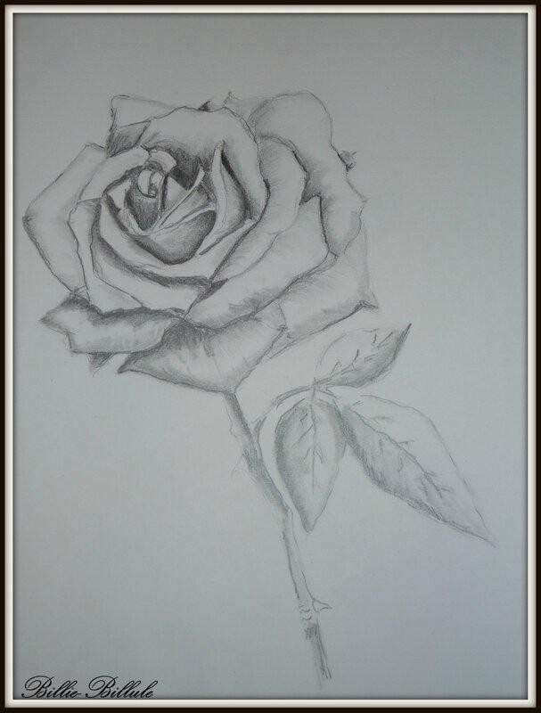 rose crayon