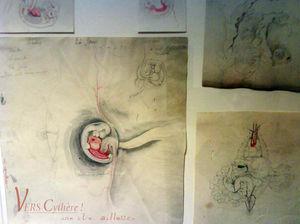 ile_anatomique_04