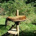 tigre zoo des sables