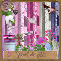 Kit secret de fille freebies