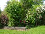 jardin_3