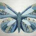 Le projet papillon