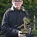 Le premier bonsaï de baptiste
