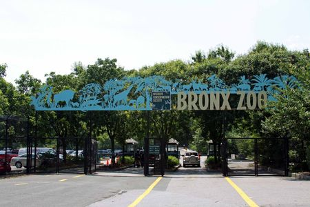 NYC_MMI___Bronx_Zoo_31