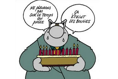 proverbe chat-anniv'