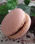 macaron_Mercotte