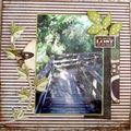 Les Everglades 22