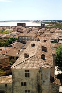 AIGUES_MORTES_Avril_08__6_