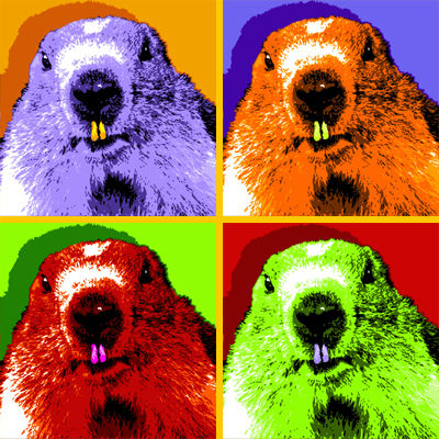 marmotte_psych_