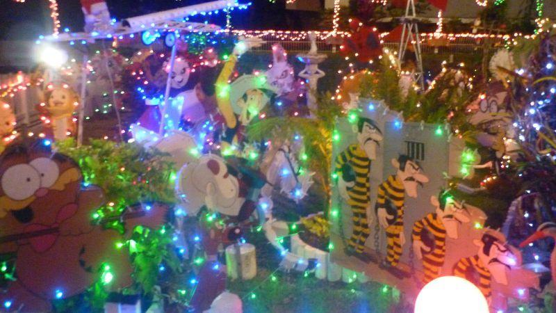 allo le jardin du père Noël...à Nouméa :) - lama à nouméa