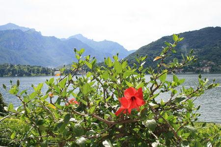 Vacances_Lacs_Italien_Venise_Juin_2009_492