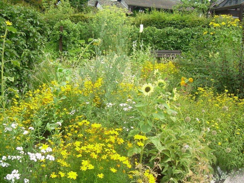 Jardin des 5sens1 photo de allons a yvoire le jardin des for Jardin 5 juillet biskra