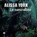 Rentrée littéraire 2016 : nina bouraoui, bill clegg, alissa york