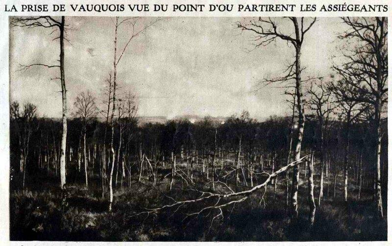 Vauquois bois2