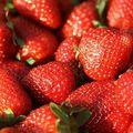 Sorbet fraise-basilique