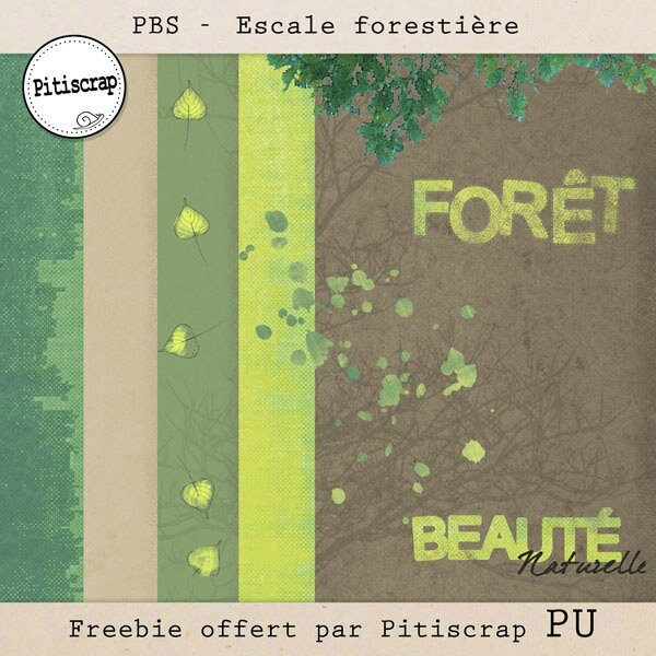 PBS-escale forestière-Pitiscrap- preview