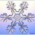 la neige sous le microscope