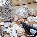 DIY coquillages seashell lilybouticlou