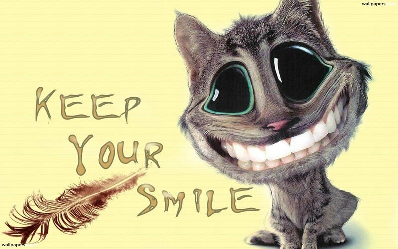 smile-cartoon-humor-wallpaper-smiles-cat-funny-image