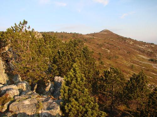 2008 05 23 Sur les hauteurs du Mont Mézenc au petit matin (7)