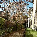 Oxford_DiversOxford#11