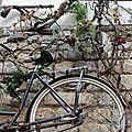 Vélo_1588