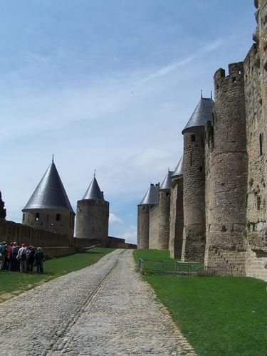Carcassonne-lices