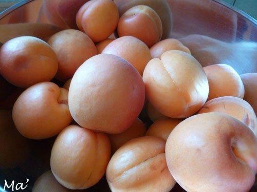 140614_abricots