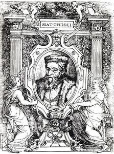 Mattioli2