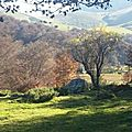 payolle_paysage1