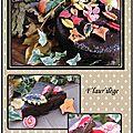 Gâteau au chocolat sous coque et ses feuilles fourrées au caramel
