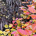 http://artisticreuse23.canalblog.com