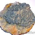 Barytine - fluorite h441