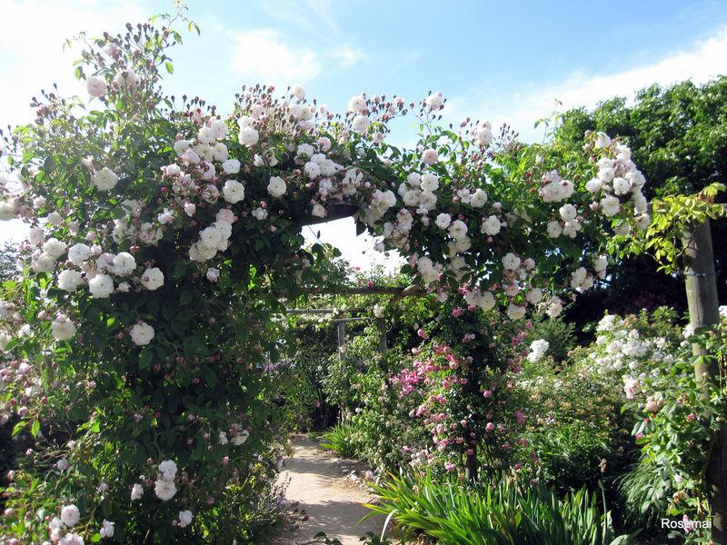 Jardin de Morailles