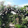 Le Jardin de Roses Anciennes de Morailles (Pithiviers le Vieil)