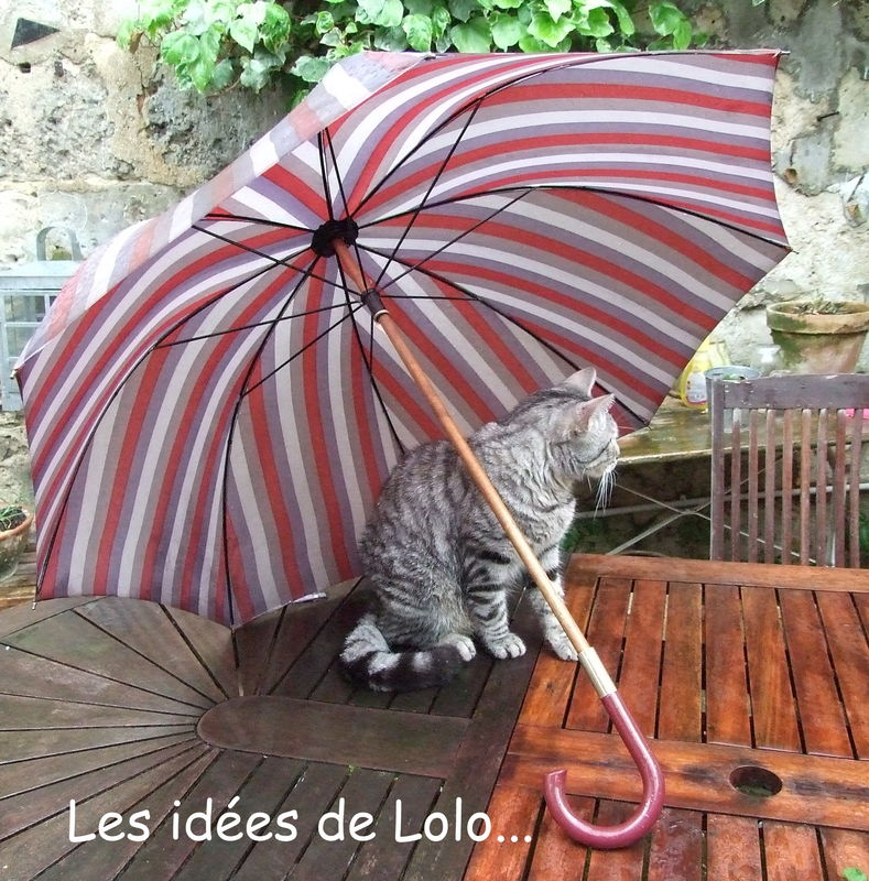 I'm singing in the rain...