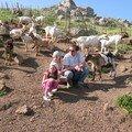 les filles au mileu du troupeau de chèvre