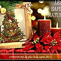 concours sapins naturels