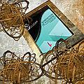 Service presse de l'ivre book : bénédiction de poussière (r. senelier)