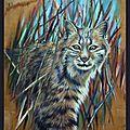 Lynx roux d'Amérique Peinture huile sur bois inspiration photo Félis Rufus - Lynx rufus - bobcat