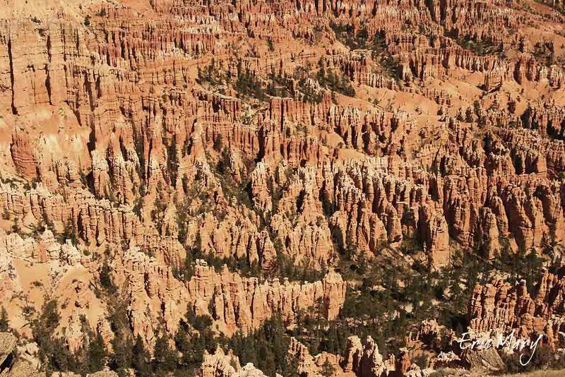 J9-Bryce Canyon_13