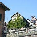 CB-Strasbourg 098