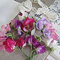 Scent of sweet pea